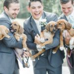 Bridal Party Holds Rescue Pups Instead Of Flowers To Help Them Find Homes
