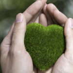Improve Your Home and Health with These 7 Green Living Tips